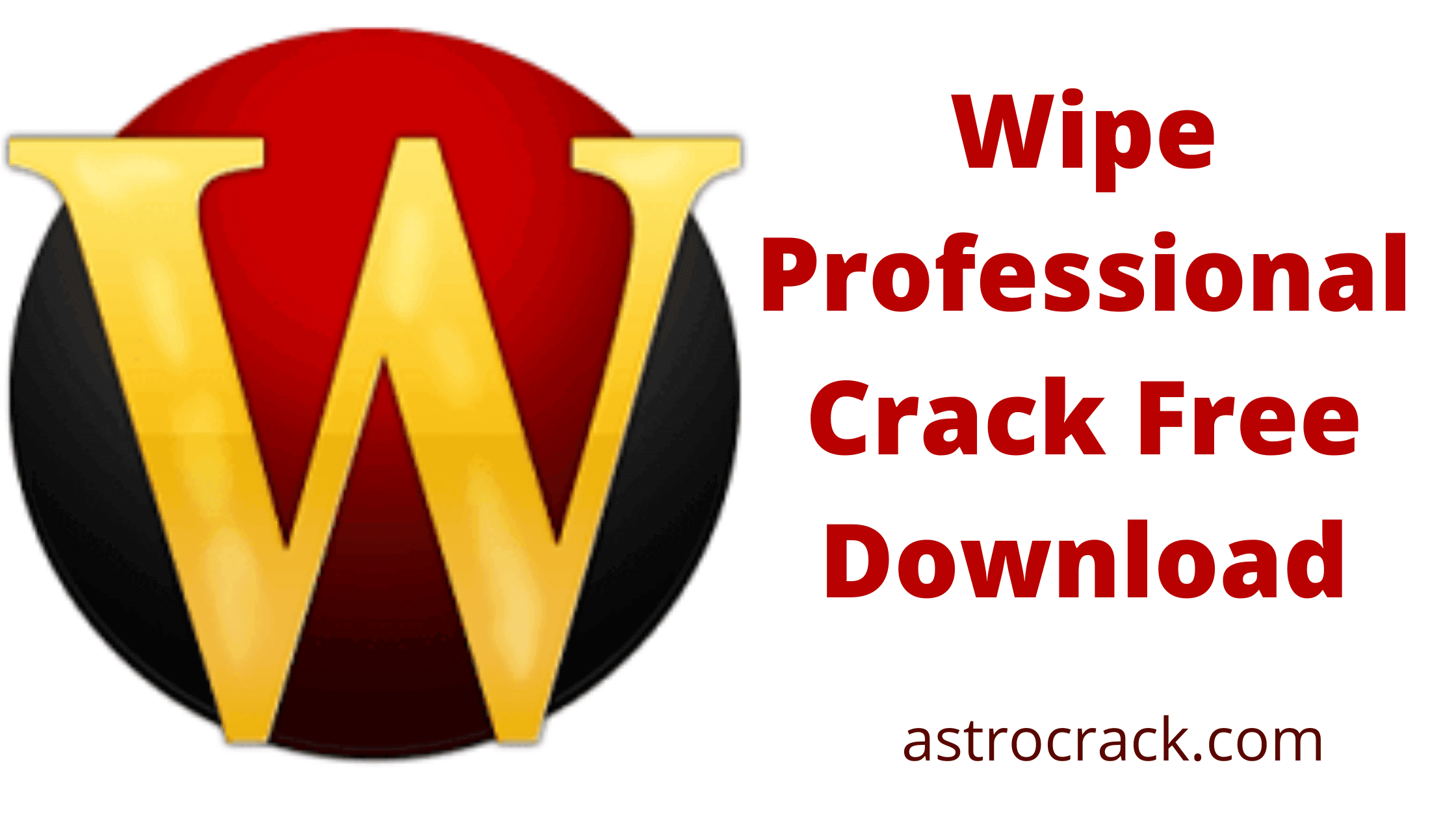 Wipe Professional, Wipe Professional crack, Wipe Professional crack download, Wipe Professional Crack patched, Wipe Professional download